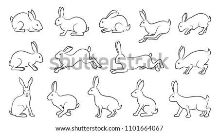 rabbits comics line on the white background
