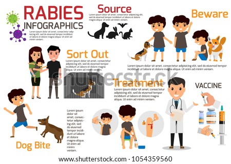 Rabies Infographics. Illustration of rabies describing symptoms and medications or vaccine. vector illustrations.