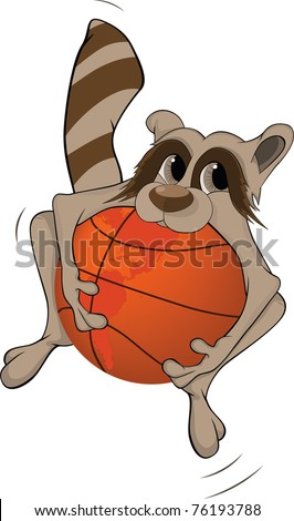 Raccoon and a basketball ball. Cartoon