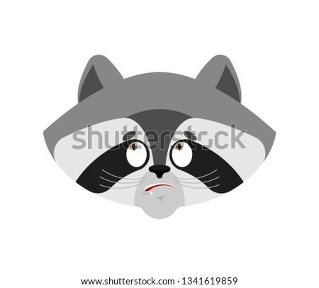 raccoon confused oops emoji