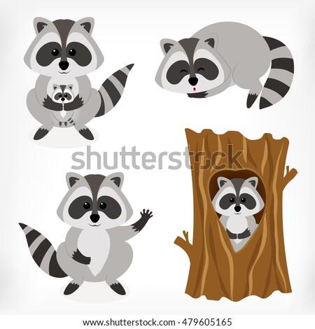 Raccoon set with standing raccoon, raccoon with baby, sleeping raccoon and raccoon inside tree. Vector cartoon illustration.
