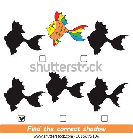 rainbow fish beautiful shadow