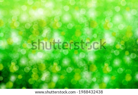raindrops splash in forest with