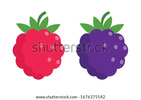 raspberry and blackberry in
