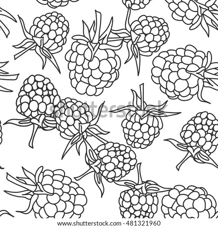 raspberry blackberry with