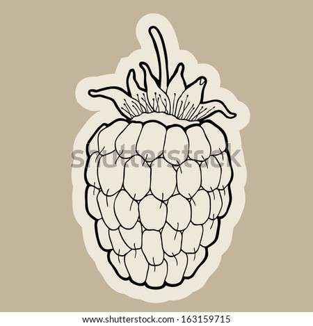 Raspberry cartoon vector.