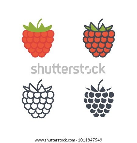 Raspberry flat outlined solid vector icon