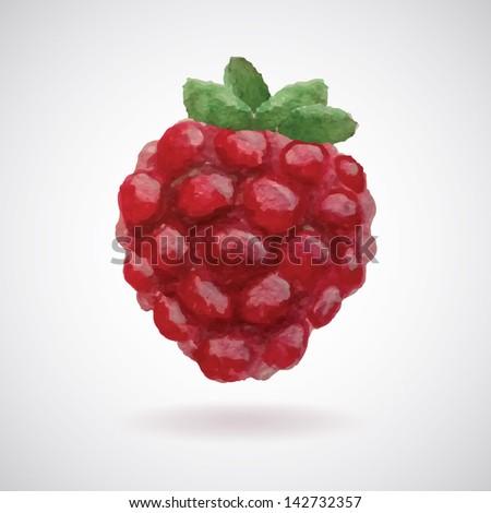 raspberry watercolor