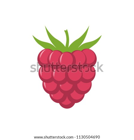 raspberry with leaf vector icon