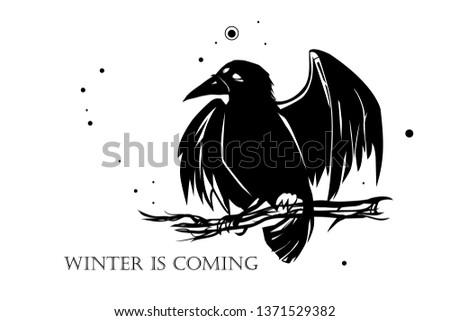 raven   black silhouette