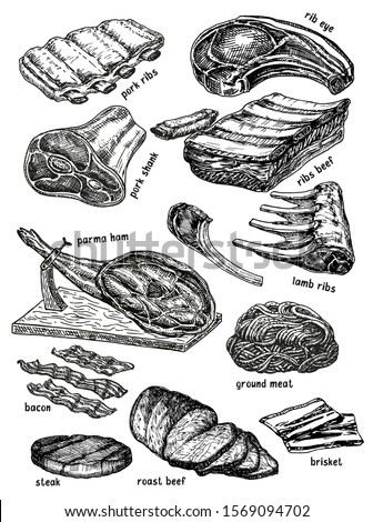 Raw meat vector drawing set. Hand drawn beef steak, pork ham, roast beef, steak, lamb rib. Raw food ingredient. Vintage sketch. Butcher shop product. Great for label, restaurant menu.