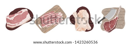 Raw uncooked meat, pork fillet, bacon slices, chicken legs, ham hough, beef gammon, delicious barbecue ingredients set. Butcher shop assortment concept cartoon sketch. Flat vector illustration