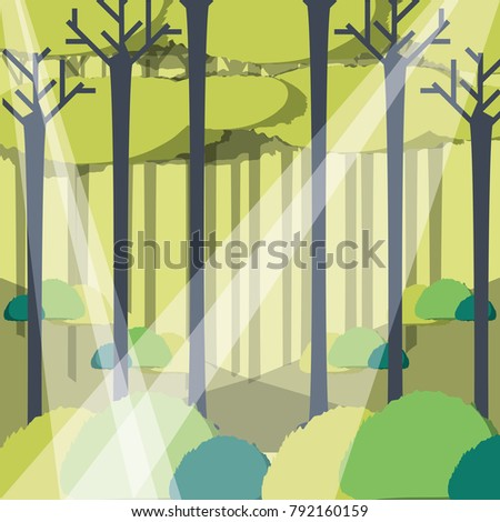 rays of sun light entering in a green forest landscape