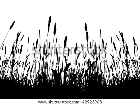 real grass vector silhouette / on white background