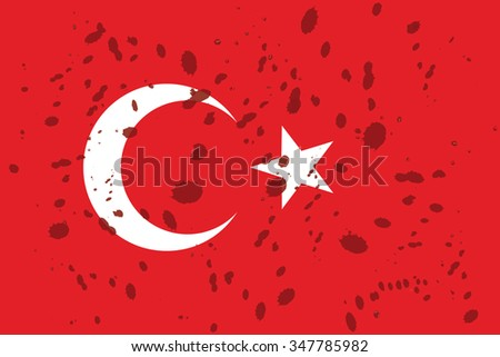 real turkish national flag with