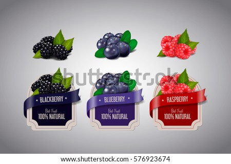 realistic berry labels set with