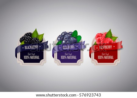 Realistic Berry labels set with blackberry, blueberry and raspberry fruits isolated. Berry jam label design template.