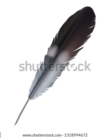 realistic black quill pen vector