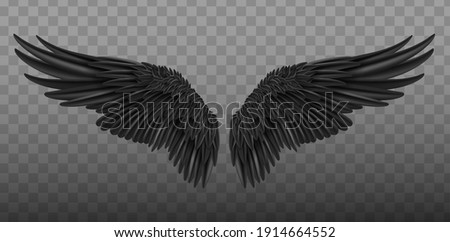 Realistic black wings. Pair of white isolated angel style wings with 3D feathers on transparent background.