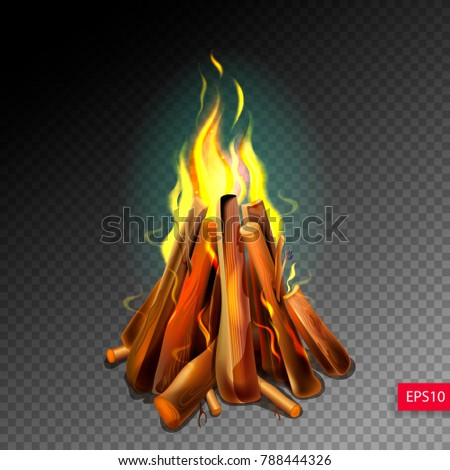 realistic burning bonfire with...