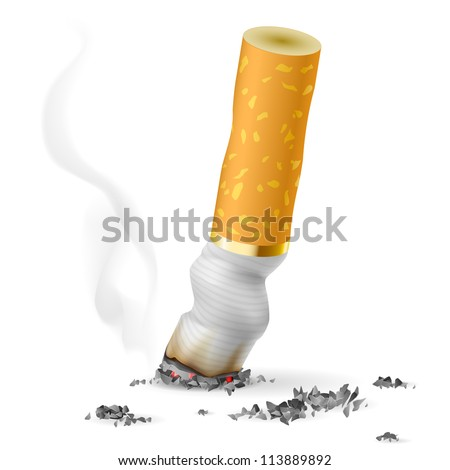 Realistic cigarette butt.  Illustration on white background