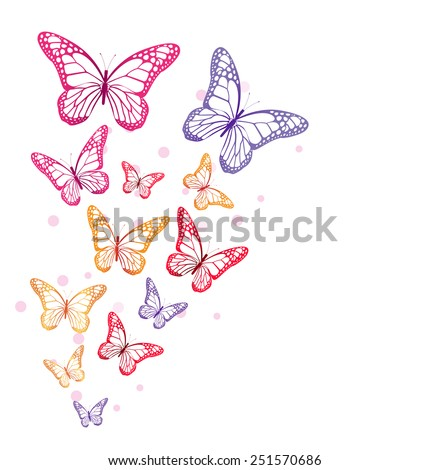 Realistic Colorful Butterflies Isolated for Spring. Editable Vector Illustration