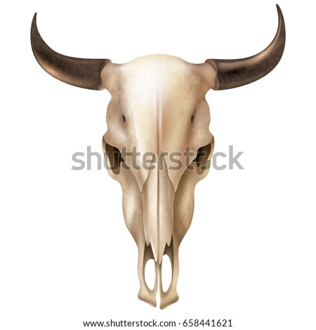 realistic cow skull with stains