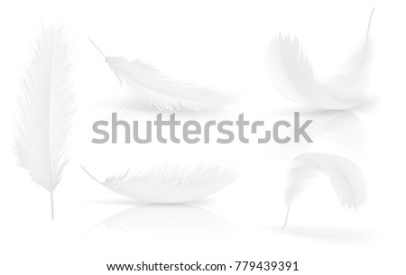 Shutterstock Realistic 3d white bird feathers set. Symbol of lightness, innocence, hope and heaven. Various shapes of Angel or bird detailed feathers. Vector isolated illustration on a white background.