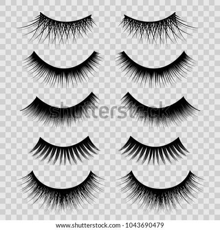 Realistic Detailed 3d Feminine Black Lashes Set on a Transparent Background Beauty Product. Vector illustration of False Eyelashes