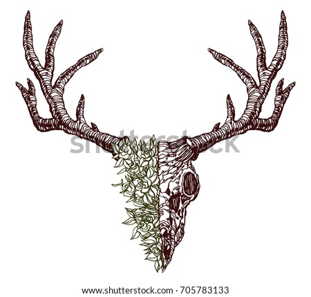 Realistic detailed hand drawn illustration of an old animal deer skull half of head is grass and flowers. Graphic tattoo style image on occult theme. Design for t-shirt print.