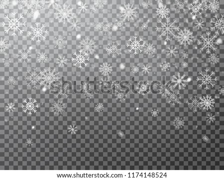Realistic falling snowflakes isolated on transparent background. Winter background with snow and snowflakes. Magic white snowfall texture. Christmas design. Vector illustration