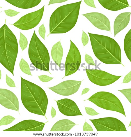 Realistic Fly Green LeavesSeamless Pattern Background on a White Decorative Organic Element Creative Botany Concept. Vector illustration