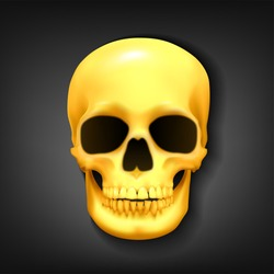 Realistic golden skull head on dark background, Vector Illustration