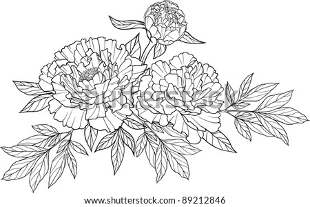 Peony Flowers on Realistic Graphic Three Peony Flower Tattoo Image With Leaves  Cool