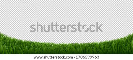 Realistic grass border. Green herb lawn, garden herb plants frame, fresh lawn border element vector background. Horizontal border lawn grass, meadow field green illustration