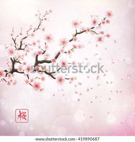 realistic japan cherry branch
