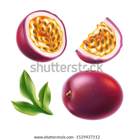 Realistic passionfruit with slices, seeds and green leaves set. Fresh exotic fruit for healthy dieting. Juicy raw tropical fruit with yellow seeds. Vector purple fruit full of vitamins.