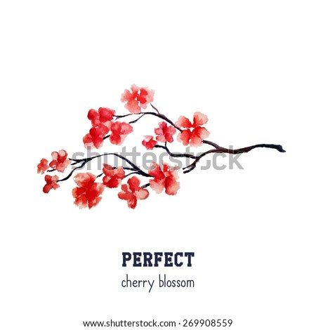 realistic red sakura blossom