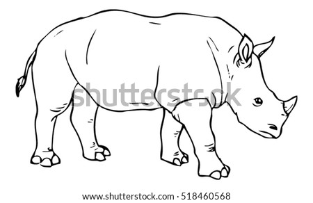 Realistic Rhino Drawing - Vector