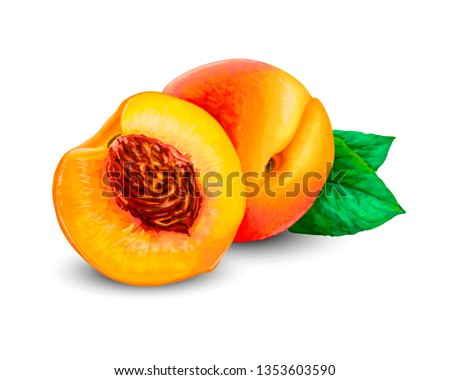 Realistic Ripe peaches, whole and slice. Peach juicy sweet fruit 3d high detail isolated on white background. Vector realistic illustration