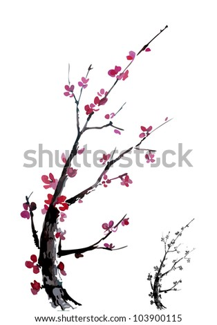 Realistic sakura blossom - Japanese cherry tree isolated on white background. Two branches - color and monochrome