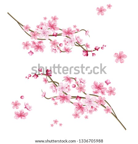 Realistic sakura tree branch. Elegant japanese symbol. Blooming plant twig with pink flower petals. Asian cultural symbol. Floral spring design decoration. Vector illustration.