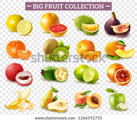 Realistic set of various kinds of fruits with orange kiwi pear lemon lime apple isolated on transparent background vector illustration