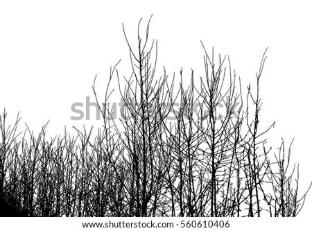 realistic silhouette of bush