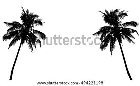 realistic silhouettetropical