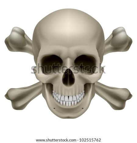 Realistic skull and bones. Illustration on white background