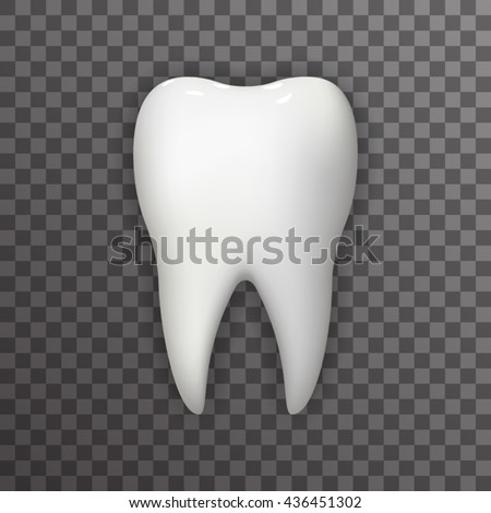 Realistic Tooth Poster Transperent Stomatology Icon