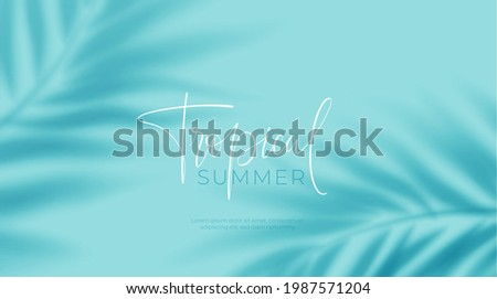 Realistic transparent shadow from a leaf of a palm tree on the blue background. Tropical leaves shadow. Mockup with palm leaves shadow. Vector illustration EPS10