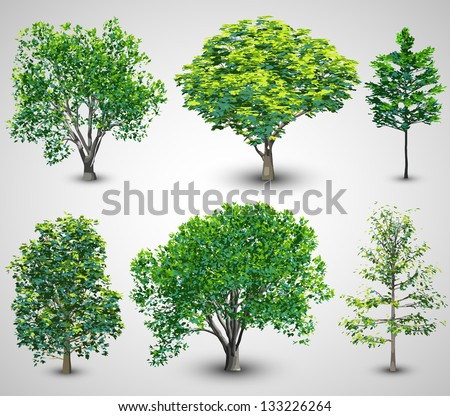 realistic tree set with