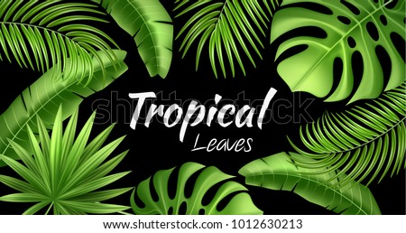 banana leaf templates download free vector art stock graphics